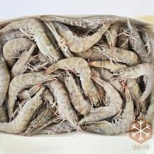페루새우(홀새우) 2kg